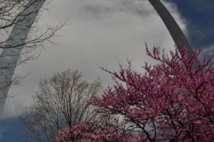StLouisArch-compressed
