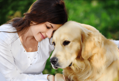 How to heal your pets with energy