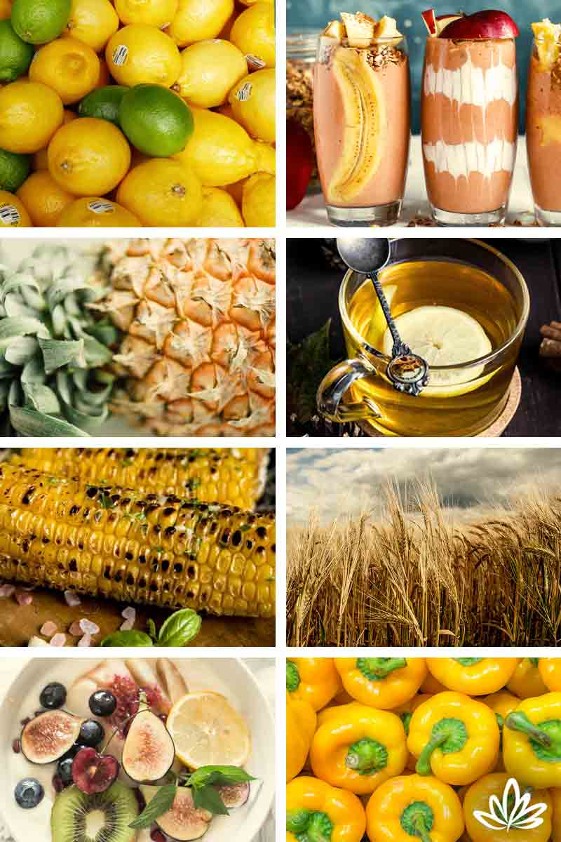 Chakra Foods For Healing Amp Health Blog Deborah King