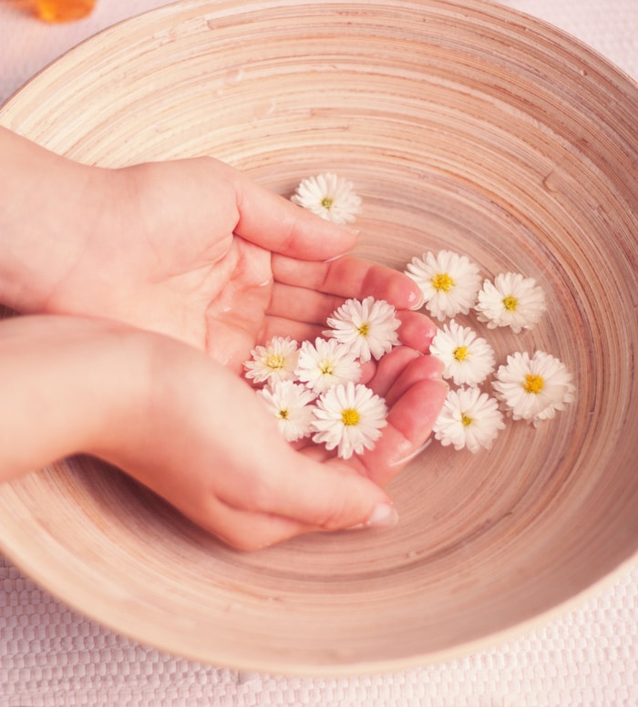 The Healer's Art: Faith and the Healing Power of Jesus Christ